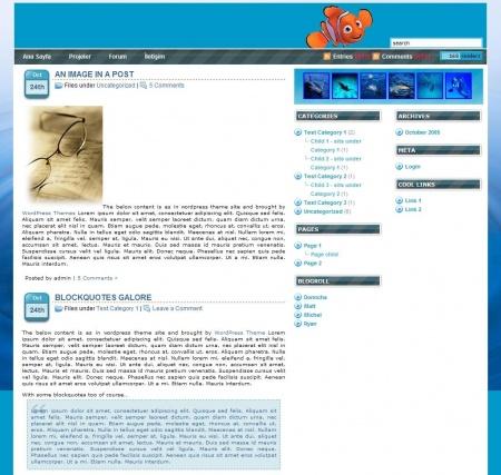1197820927 wordpress o2 MOD 1.0   Wordpress Teması