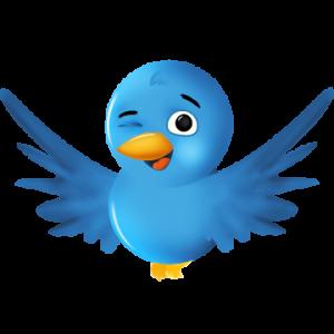 twit 300x300 Twitter'da Aramanız Gereken En Önemli 4 Şey