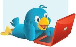 twit Türkçe Twitter Kullanım Kılavuzu