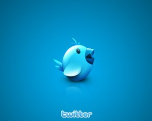 """twitter bird 2 300x240 Twitter jargonu: @ – """"@Mesajları"""" Nedir, Nasıl Kullanılır?"""